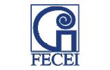 Federación Española de Centros de Enseñanza de Idiomas